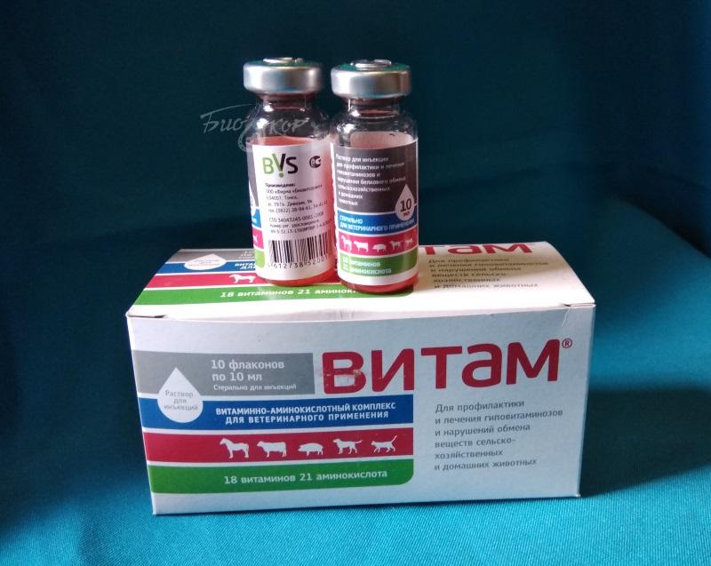 подкормка рассады витаминами в1 в6